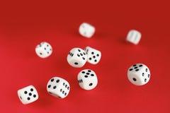 Weiße Würfel auf rotem Hintergrund Brettspielkonzept Lizenzfreie Stockfotos