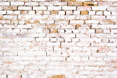 Weiße Wand des alten alten Ziegelsteines mit Moos Ziegelstein-Beschaffenheit der alten Wand Lizenzfreie Stockfotos