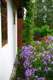 Weiße Wand und Flieder Lizenzfreies Stockfoto