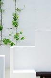 Weiße Wandgestaltung mit Anlage Lizenzfreie Stockfotografie