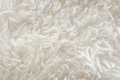 Weiße weiche Wolle masert Hintergrund, nahtlose Rohbaumwolle, natürliche Schafwolle des Lichtes, Nahaufnahmebeschaffenheit des we Lizenzfreies Stockfoto