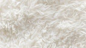 Weiße weiche Wolle masert Hintergrund, nahtlose Rohbaumwolle, natürliche Schafwolle des Lichtes, Nahaufnahmebeschaffenheit des we Stockbilder