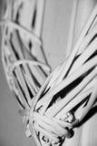 Weiße Weidenwandkunst stockfoto