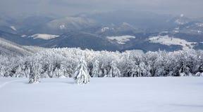 Weiße Winterlandschaft Stockbild