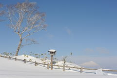 Weiße Winterlandschaft mit birdtable und einem schneebedeckten Vulkan Stockfoto