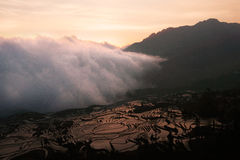 Weiße Wolke des Nebels eine Reisweidelandschaft in einem Tal zwischen Bergen bei Sonnenuntergang kommend und umfassend lizenzfreie stockfotografie