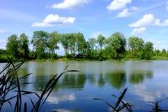 Weiße Wolken über dem Fluss und dem grünen Wald Lizenzfreie Stockfotos
