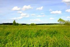 Weiße Wolken über dem Fluss und dem grünen Wald Lizenzfreies Stockfoto