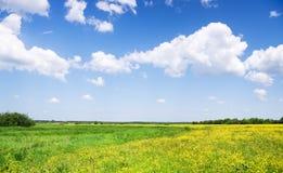 Weiße Wolken über grüner Wiese. Stockbild
