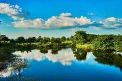 Weiße Wolken + blauer Himmel Stockfotografie