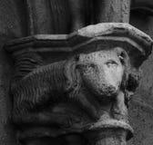 Weiße Ziege auf den cathedralÂs ernstlich lizenzfreie stockfotografie