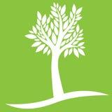Weißer Baum auf grünem Hintergrund stock abbildung
