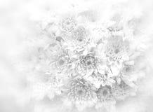 Weißer Blumenstraußhintergrund Stockfoto