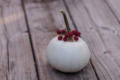 Weißer Casper-Kürbis mit roten Beeren Lizenzfreie Stockfotos