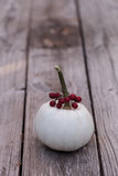 Weißer Casper-Kürbis mit roten Beeren Stockfotografie