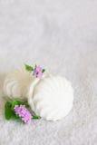 Weißer Eibisch und Vergissmeinnicht auf einem weißen Hintergrund Stockbilder