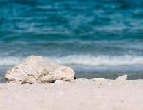 Weißer Felsen auf einem Strand Stockfotos