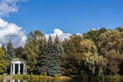 Weißer Gazebo auf dem Hintergrund von Bäumen Stockfotografie