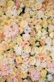 Weißer gelber rosa Rosenhintergrund stockfotografie