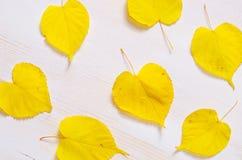 Weißer hölzerner Hintergrund mit netten gelben Blättern Stockfoto