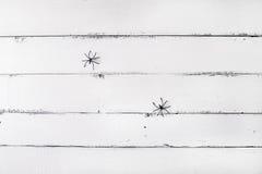 Weißer hölzerner Hintergrund mit zwei Spinnen Hintergrund für Halloween Stockbilder