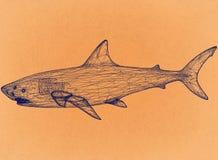 Weißer Hai - Retro- Architekt Blueprint lizenzfreie abbildung