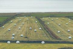 Weißer Hay Rolls auf einem grünen Feld von Island Lizenzfreie Stockfotografie