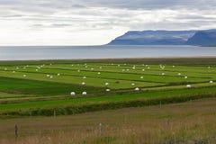 Weißer Hay Rolls auf einem grünen Feld von Island Lizenzfreies Stockfoto
