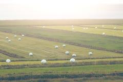 Weißer Hay Rolls auf einem grünen Feld von Island Lizenzfreies Stockbild