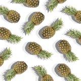 Weißer Hintergrund mit Bild der reifen Ananas Lizenzfreie Stockbilder