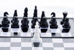 Weißer König Lizenzfreies Stockfoto