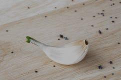 Weißer Knoblauch Stockbilder