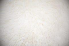 Weißer langer Haarpelzhintergrund Stockbild