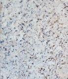Weißer Marmorbodenbeschaffenheitsabschluß oben, nahtloser Hintergrund Stockfotos