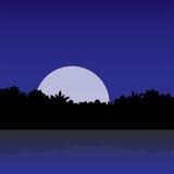 Weißer Mond im Dschungel Stockfotos