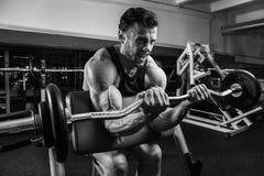 Weißer muskulöser Mann, der sein Bizeps in der Turnhalle durch Barbell BW ausbildet lizenzfreie stockbilder
