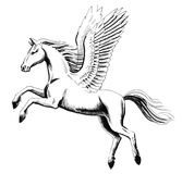 Weißer Pegasus Stockfotografie