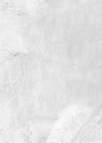 Weißer Pelzhintergrund nahaufnahme Stockfotos
