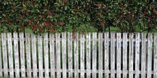 Weißer Pfosten-Zaun Lizenzfreies Stockbild