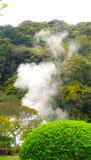 Weißer Rauch mit dem grünen Garten Lizenzfreies Stockfoto