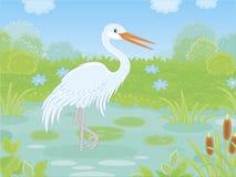 Weißer Reiher in einem kleinen See lizenzfreie abbildung