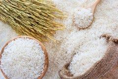 Weißer Reis in der Schüssel und in einer Tasche, ein hölzerner Löffel und Reispflanze auf Hintergrund des weißen Reises Stockbild