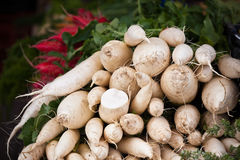 Weißer Rettichstapel in einem Markt Stockfoto