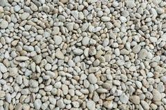 Weißer runder Felsen Stockbilder