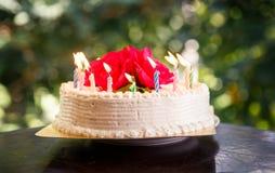 Weißer sahniger köstlicher Kuchen mit Kerzen Lizenzfreie Stockfotos