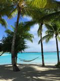 Weißer sandiger Strand und Hängematte zwischen Palmen Lizenzfreies Stockfoto