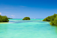 Weißer Sandstrand-Blauozean Stockbild