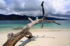 Weißer Sandstrand in Insel Adang Rawi, Nationalpark Tarutao Lizenzfreie Stockfotos