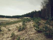 Weißer sauberer Sandbergbau für Glasproduktion Wiederherstellung des gewonnenen Gebiets Stockfotografie