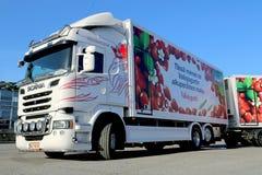 Weißer Scania-LKW und voller Anhänger Lizenzfreies Stockbild
